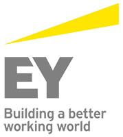 Ernst & Young Enterprise Intelligence